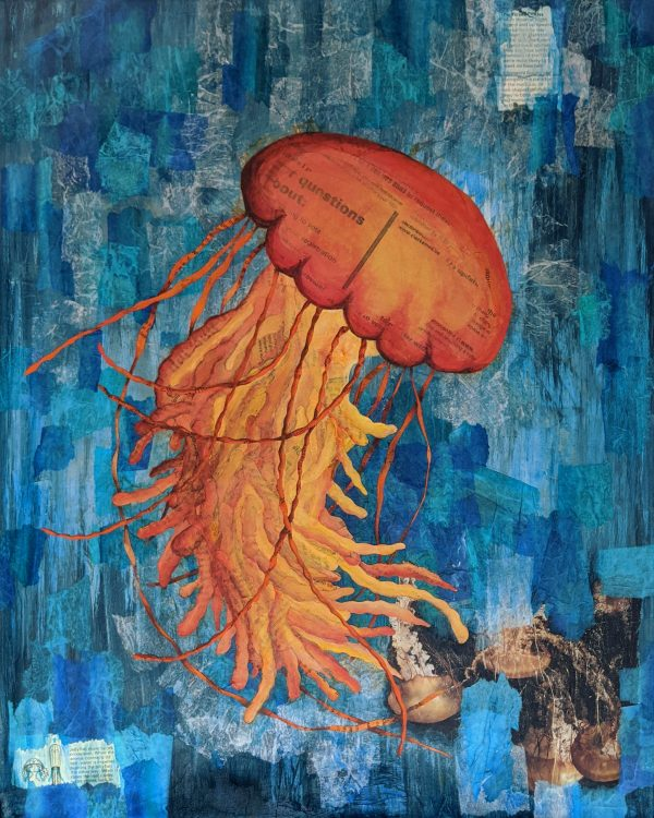 Paradox of the medusas
