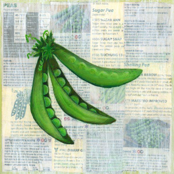 Victory garden: Peas